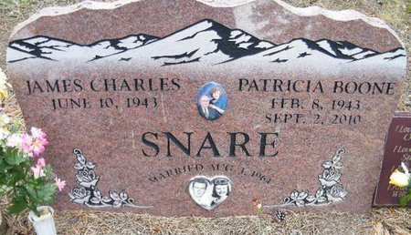 SNARE, JAMES CHARLES - Teller County, Colorado   JAMES CHARLES SNARE - Colorado Gravestone Photos