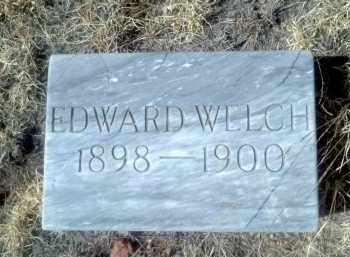 WELCH, EDWARD - Teller County, Colorado | EDWARD WELCH - Colorado Gravestone Photos