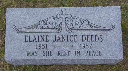 DEEDS, ELAINE JANICE - Washington County, Colorado | ELAINE JANICE DEEDS - Colorado Gravestone Photos