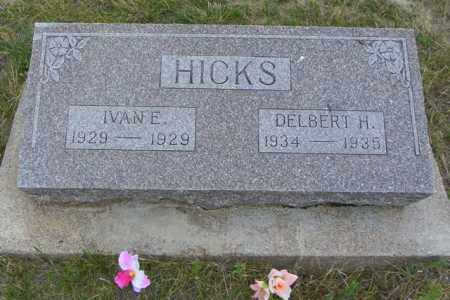 HICKS, DELBERT H - Washington County, Colorado | DELBERT H HICKS - Colorado Gravestone Photos