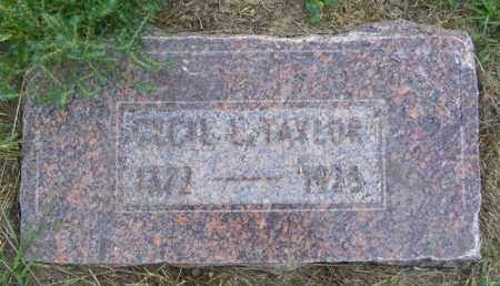 TAYLOR, CECIL E - Washington County, Colorado | CECIL E TAYLOR - Colorado Gravestone Photos