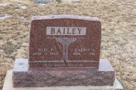 BAILEY, CARRIE ALLEN - Weld County, Colorado | CARRIE ALLEN BAILEY - Colorado Gravestone Photos