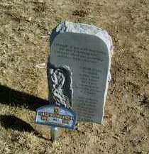 CHAPMAN, GARY WAYNE - Yuma County, Colorado | GARY WAYNE CHAPMAN - Colorado Gravestone Photos