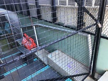 HELP us install a rail at Frankston skatepark