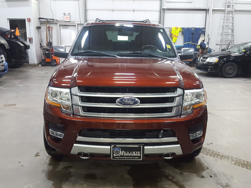 2017 Ford Expedition Platinum  - Navigation - Remote Starter - $305 B/W