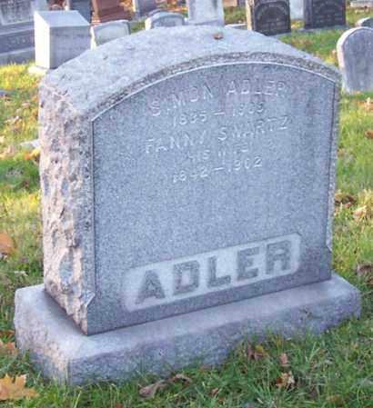 SWARTZ, FANNY - Albany County, New York | FANNY SWARTZ - New York Gravestone Photos