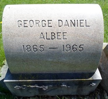 ALBEE, GEORGE DANIEL - Albany County, New York | GEORGE DANIEL ALBEE - New York Gravestone Photos