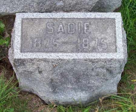 ANKER, SADIE - Albany County, New York | SADIE ANKER - New York Gravestone Photos