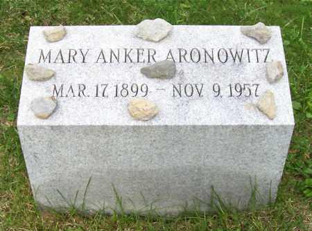 ARONOWITZ, MARY - Albany County, New York | MARY ARONOWITZ - New York Gravestone Photos