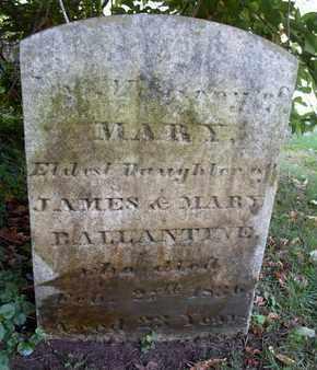 BALLANTINE, MARY - Albany County, New York   MARY BALLANTINE - New York Gravestone Photos