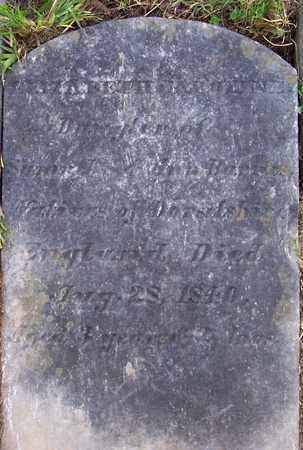 BARNES, ELIZABETH CAROLINE - Albany County, New York | ELIZABETH CAROLINE BARNES - New York Gravestone Photos