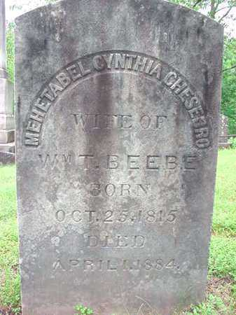 BEEBE, MEHETABEL CYNTHIA - Albany County, New York | MEHETABEL CYNTHIA BEEBE - New York Gravestone Photos