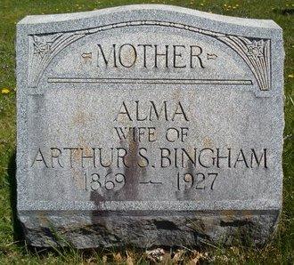 BINGHAM, ALMA - Albany County, New York | ALMA BINGHAM - New York Gravestone Photos