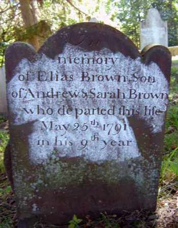 BROWN, ELIAS - Albany County, New York | ELIAS BROWN - New York Gravestone Photos