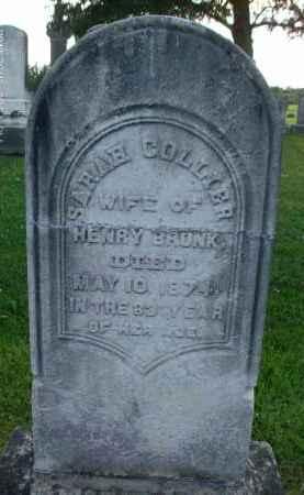 COLLIER, SARAH - Albany County, New York | SARAH COLLIER - New York Gravestone Photos