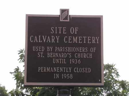 VIEW, CALVARY CEMETERY - Albany County, New York | CALVARY CEMETERY VIEW - New York Gravestone Photos