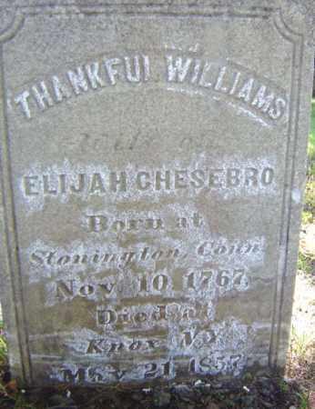 WILLIAMS, THANKFUL - Albany County, New York | THANKFUL WILLIAMS - New York Gravestone Photos