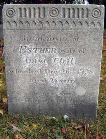 WILLIAMS, ESTHER - Albany County, New York | ESTHER WILLIAMS - New York Gravestone Photos