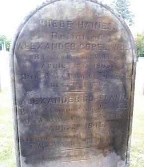HAINES, PHEBE - Albany County, New York | PHEBE HAINES - New York Gravestone Photos