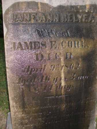 RELYEA, JANE ANN - Albany County, New York | JANE ANN RELYEA - New York Gravestone Photos
