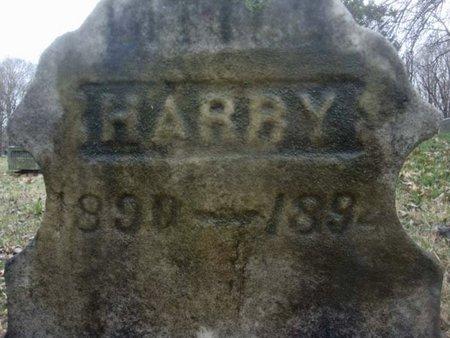 CRANNELL, HARRY - Albany County, New York | HARRY CRANNELL - New York Gravestone Photos