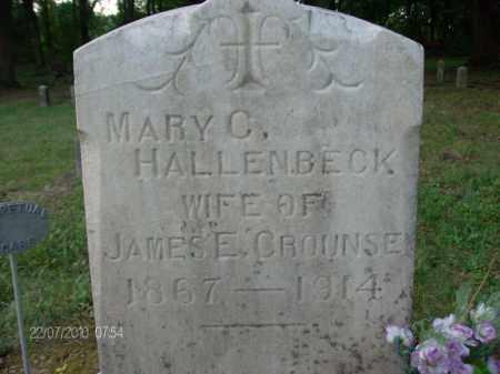 CROUNSE, MARY - Albany County, New York | MARY CROUNSE - New York Gravestone Photos