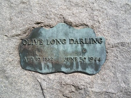 LONG HALTER, OLIVE - Albany County, New York | OLIVE LONG HALTER - New York Gravestone Photos