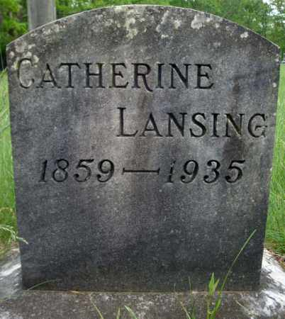 LANSING FELLOWS, CATHERINE - Albany County, New York | CATHERINE LANSING FELLOWS - New York Gravestone Photos
