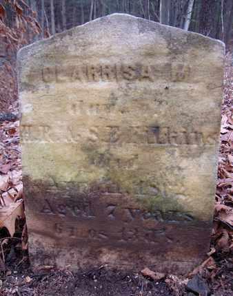 FILKINS, CLARISSA M - Albany County, New York   CLARISSA M FILKINS - New York Gravestone Photos