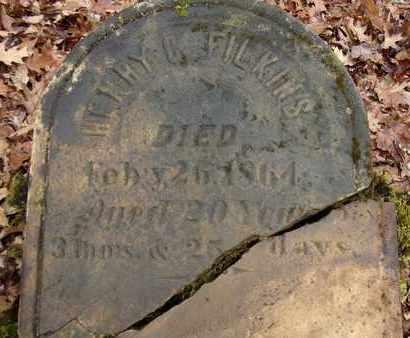 FILKINS, HENRY C - Albany County, New York | HENRY C FILKINS - New York Gravestone Photos