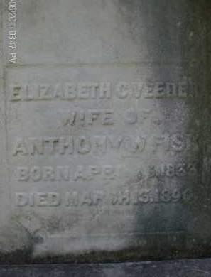 VEEDER, ELIZABETH C - Albany County, New York | ELIZABETH C VEEDER - New York Gravestone Photos
