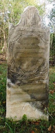 GASKIN, ABIGAL - Albany County, New York | ABIGAL GASKIN - New York Gravestone Photos
