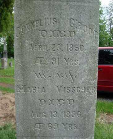 VISSCHER, MARIA - Albany County, New York | MARIA VISSCHER - New York Gravestone Photos