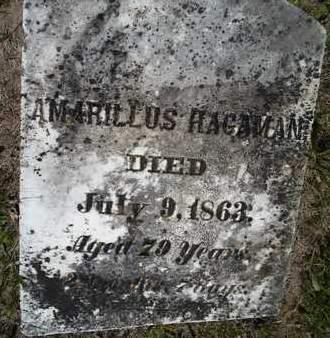 HAGAMAN, AMARILLUS - Albany County, New York | AMARILLUS HAGAMAN - New York Gravestone Photos