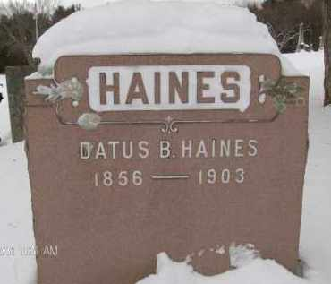 HAINES, DATUS B - Albany County, New York | DATUS B HAINES - New York Gravestone Photos
