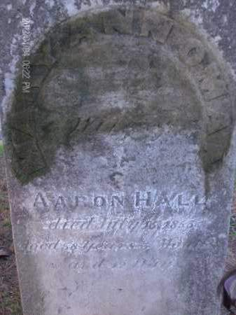 HALL, MARY ANN - Albany County, New York | MARY ANN HALL - New York Gravestone Photos