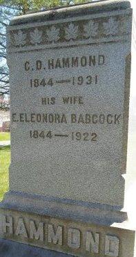 BABCOCK, EUNICE ELEONORA - Albany County, New York | EUNICE ELEONORA BABCOCK - New York Gravestone Photos