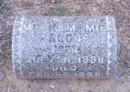 JACOBS, LOUIS T. - Albany County, New York | LOUIS T. JACOBS - New York Gravestone Photos