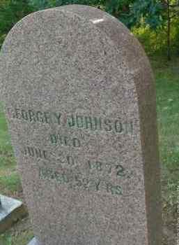 JOHNSON, GEORGE - Albany County, New York | GEORGE JOHNSON - New York Gravestone Photos