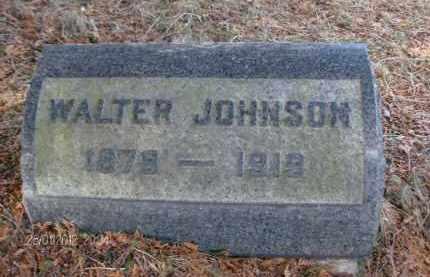 JOHNSON, WALTER - Albany County, New York   WALTER JOHNSON - New York Gravestone Photos