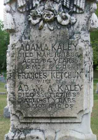 KALEY, FRANCES - Albany County, New York | FRANCES KALEY - New York Gravestone Photos