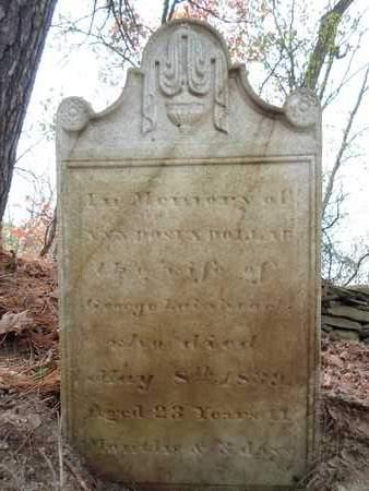 DOLLAR, ANN ROSIA - Albany County, New York | ANN ROSIA DOLLAR - New York Gravestone Photos