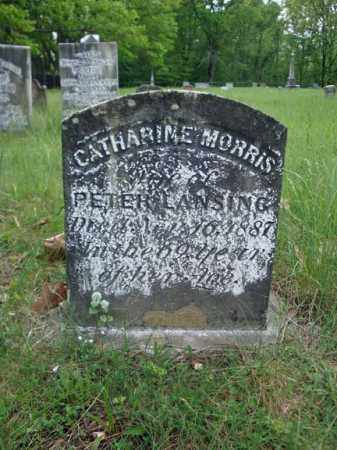 MORRIS LANSING, CATHARINE - Albany County, New York | CATHARINE MORRIS LANSING - New York Gravestone Photos