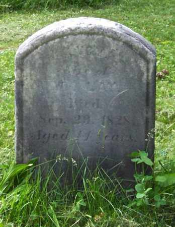 LAY, LUCY - Albany County, New York | LUCY LAY - New York Gravestone Photos