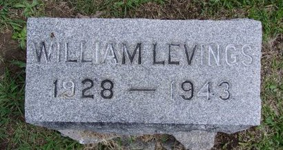 LEVINGS, WILLIAM - Albany County, New York | WILLIAM LEVINGS - New York Gravestone Photos
