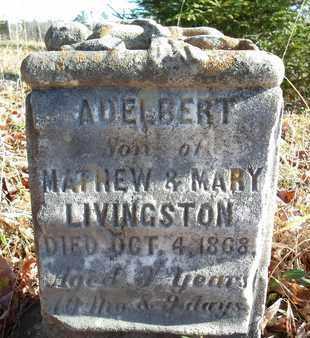 LIVINGSTON, ADELBERT - Albany County, New York | ADELBERT LIVINGSTON - New York Gravestone Photos