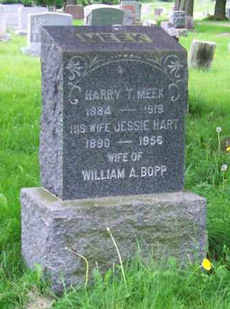 MEEK, JESSIE - Albany County, New York | JESSIE MEEK - New York Gravestone Photos