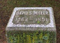 MILLER, DAVID S - Albany County, New York | DAVID S MILLER - New York Gravestone Photos