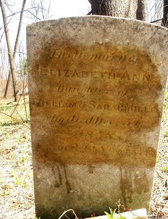 MILLER, ELIZABETH ANN - Albany County, New York | ELIZABETH ANN MILLER - New York Gravestone Photos