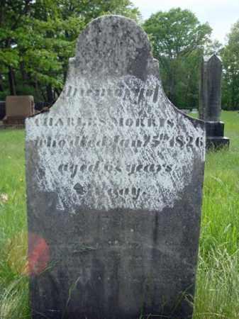 MORRIS, CHARLES - Albany County, New York | CHARLES MORRIS - New York Gravestone Photos